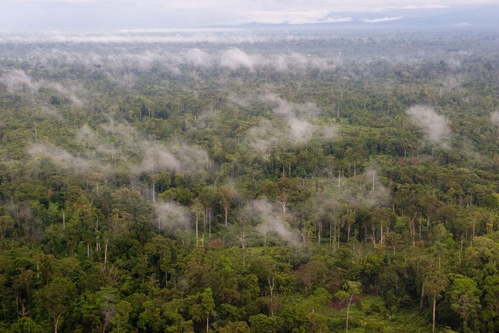 El Parque Nacional Lorentz,