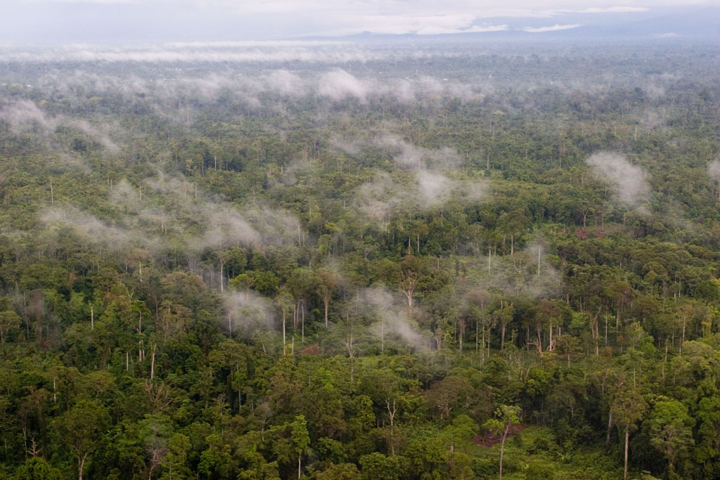 Parque Nacional Lorentz, Papua (Irian Jaya)