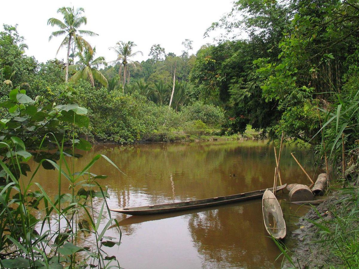 Parque Nacional de Siberut
