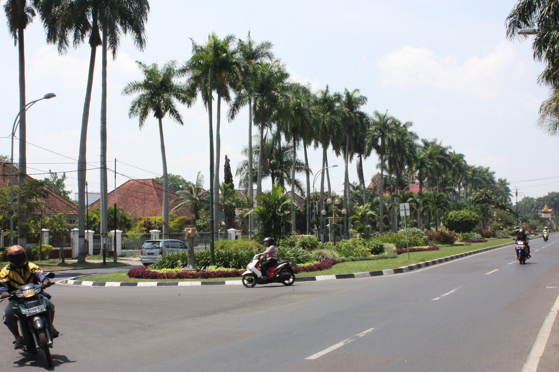 Colonial Ijen Street, Malang.