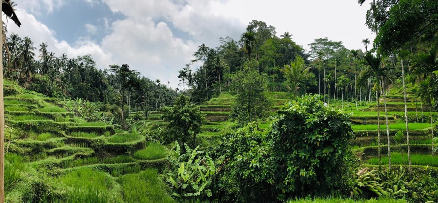 ¿Cuándo es el mejor momento para visitar Indonesia?