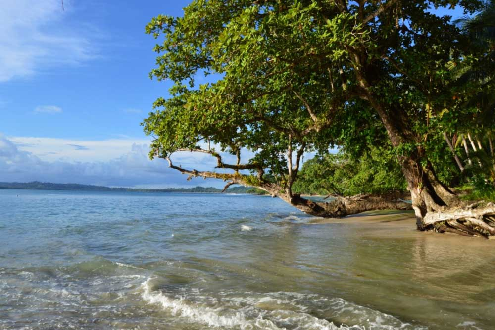 Islas Mentawai, Guía de Viajes de Sumatra