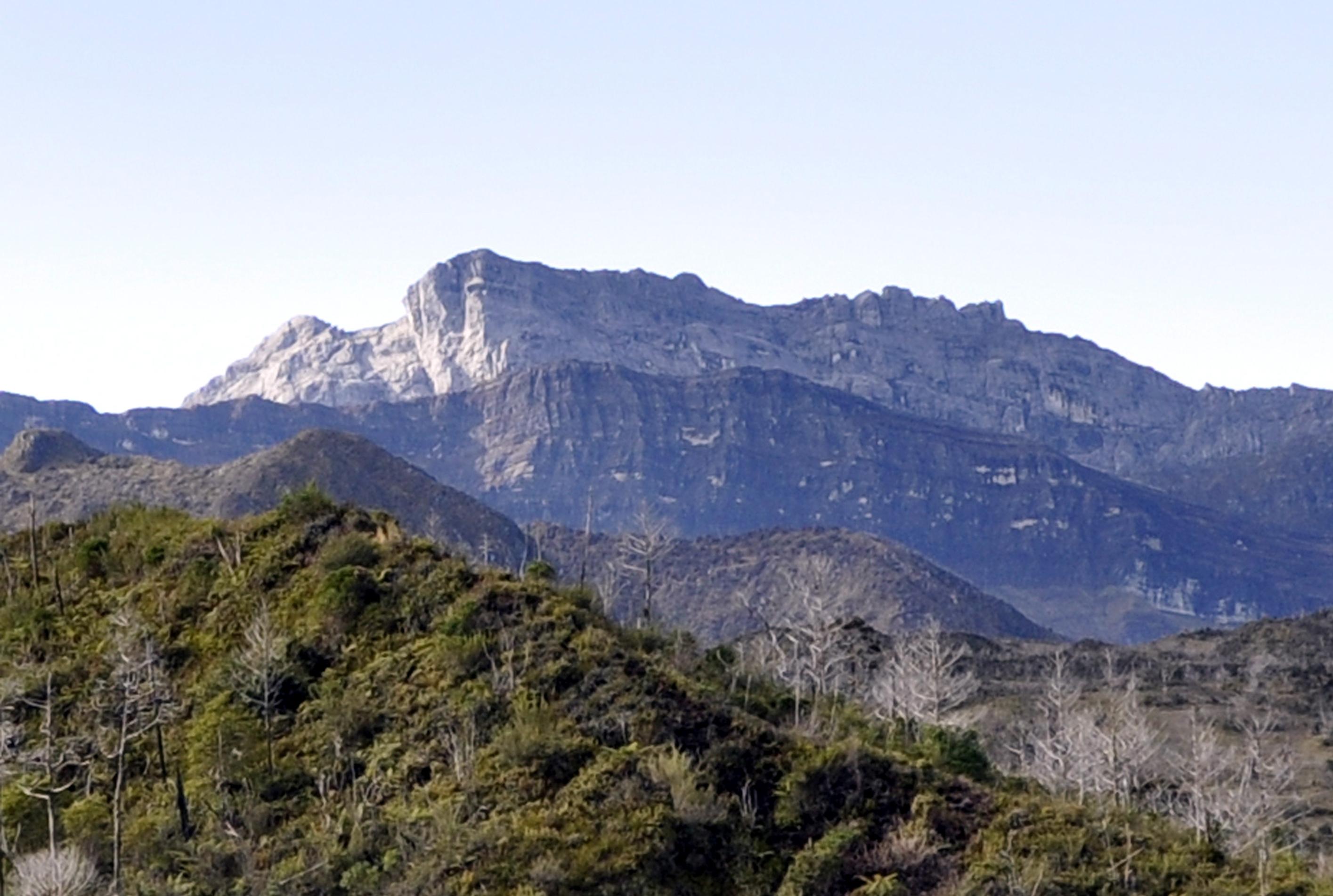 Monte Puncak Trikora