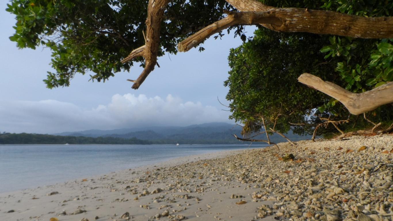 Playa en Peucang Island Beach