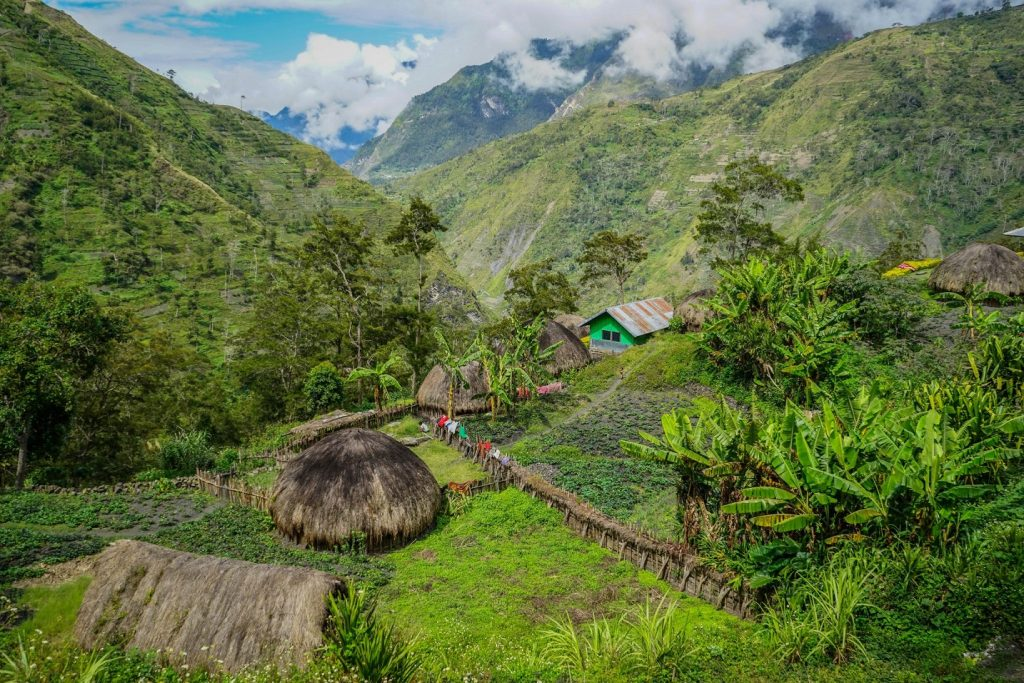 Valle de Baliem, Papua (Irian Jaya)