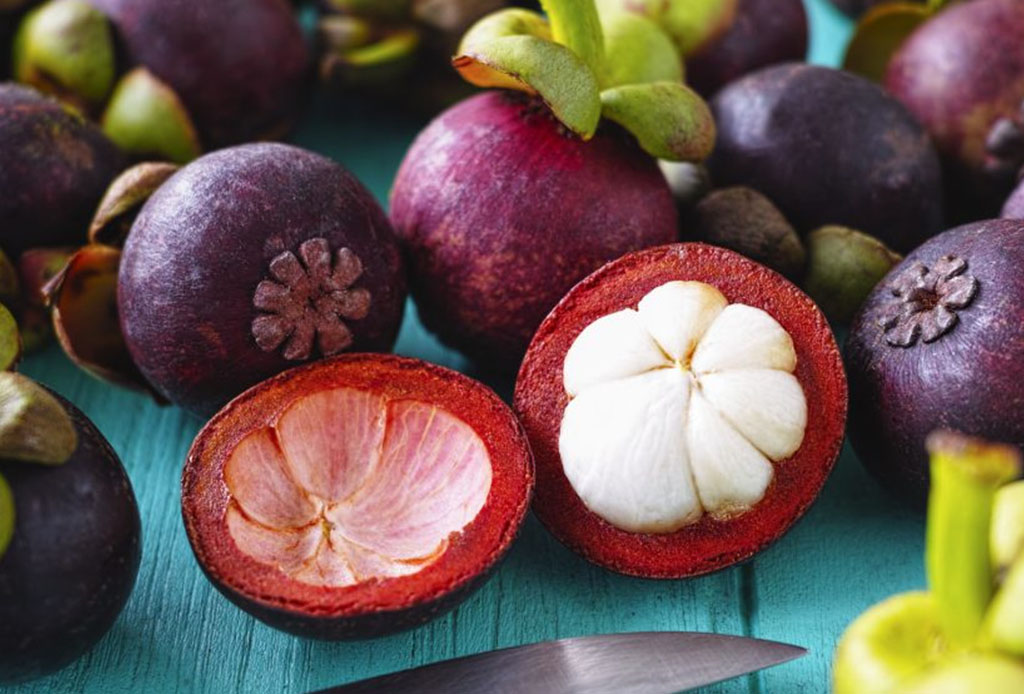 Fruta Mangostanes