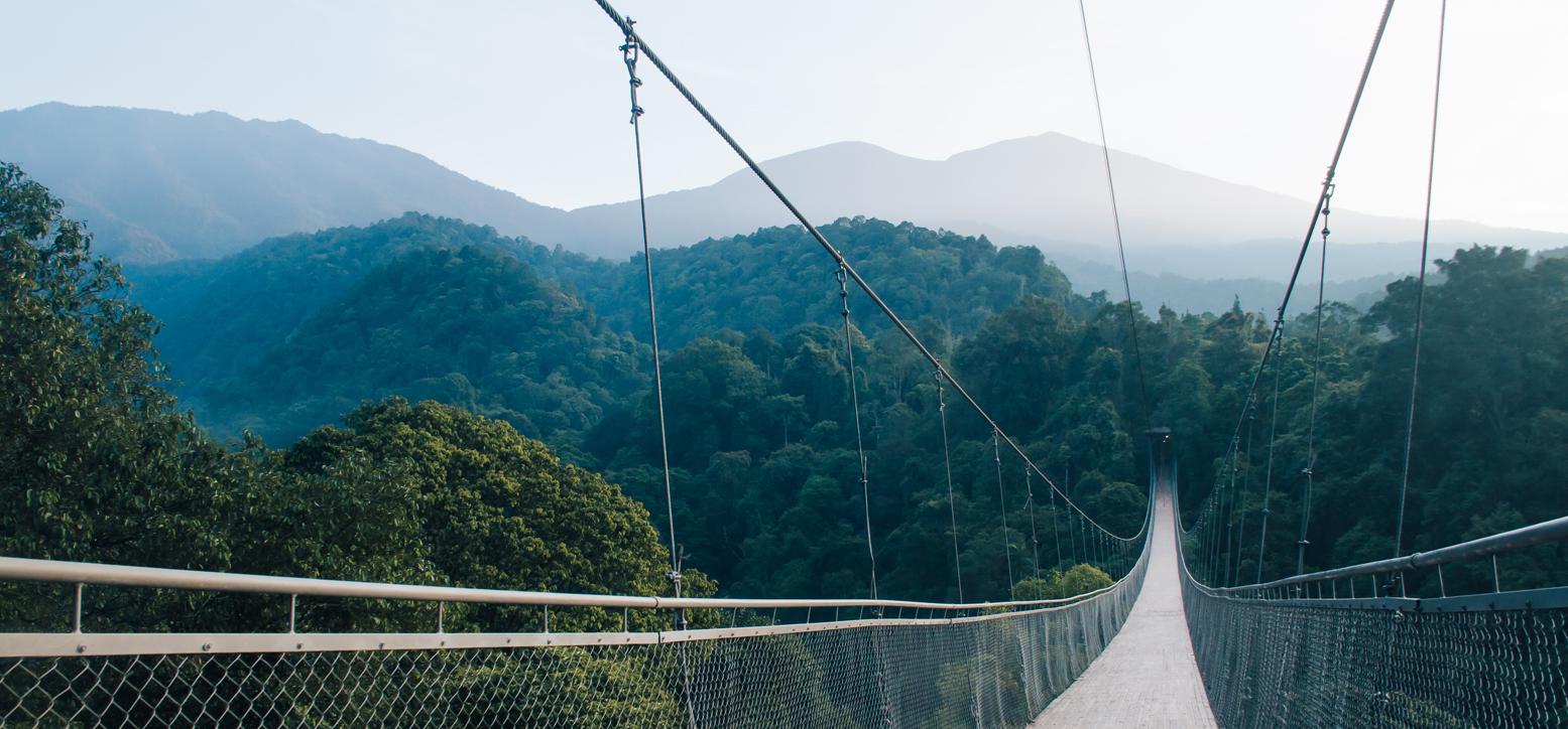 Puente de Situ Gunung