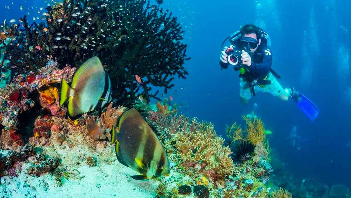 Guía de buceo Raja Ampat, Papua
