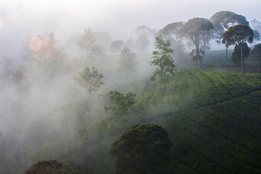 Paisajes en Bandung
