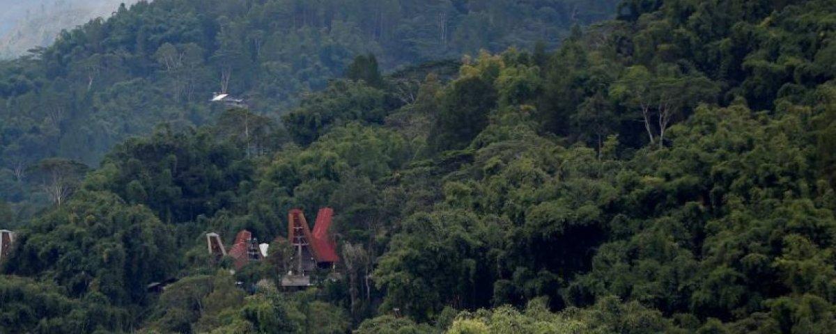 Visita al Parque Nacional Lorentz