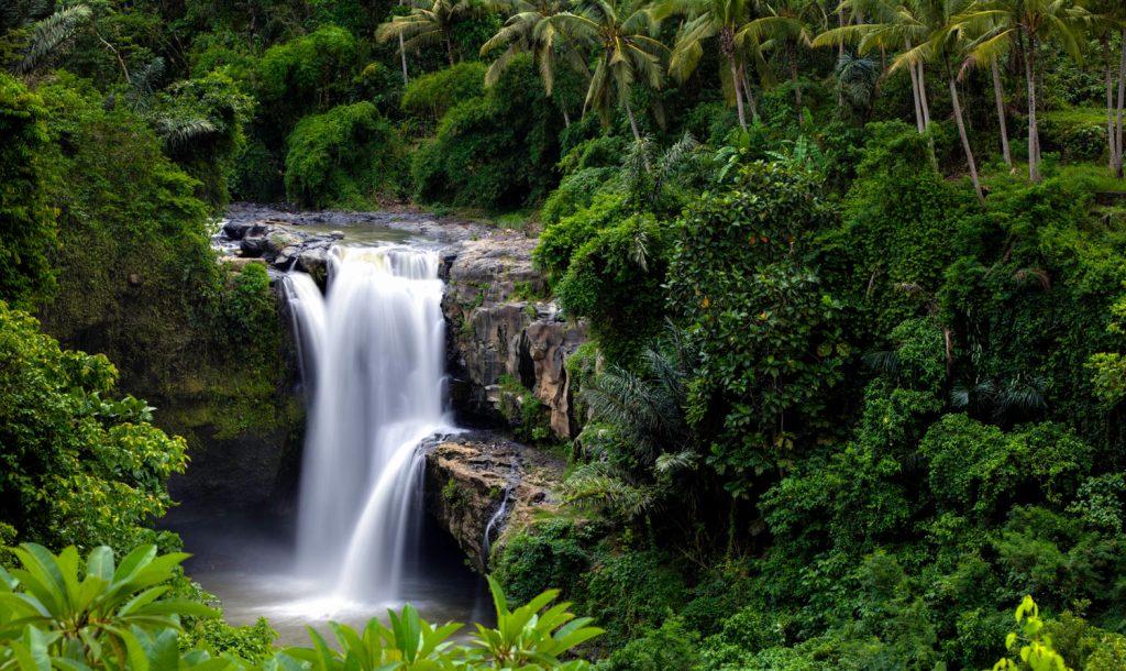 Cascadas en Bali